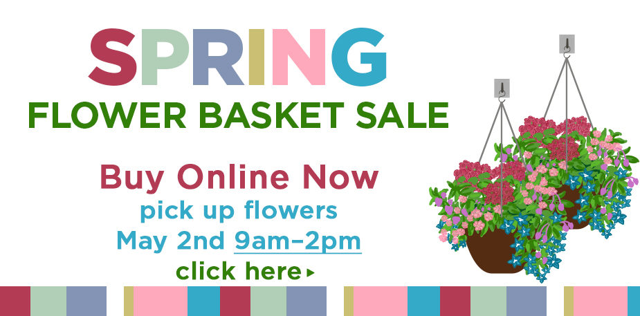Spring Flower Basket Sale